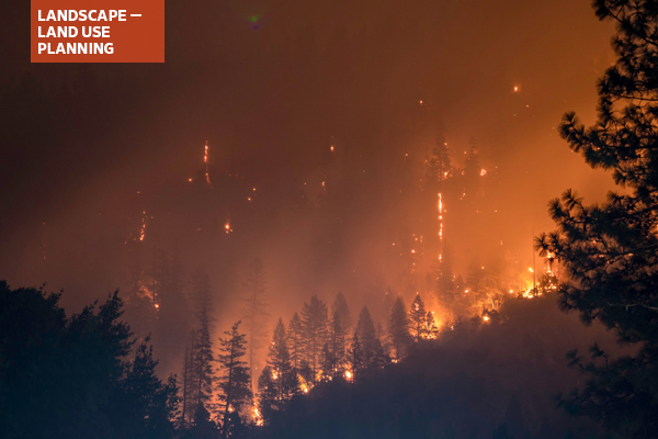 Forest fire in California