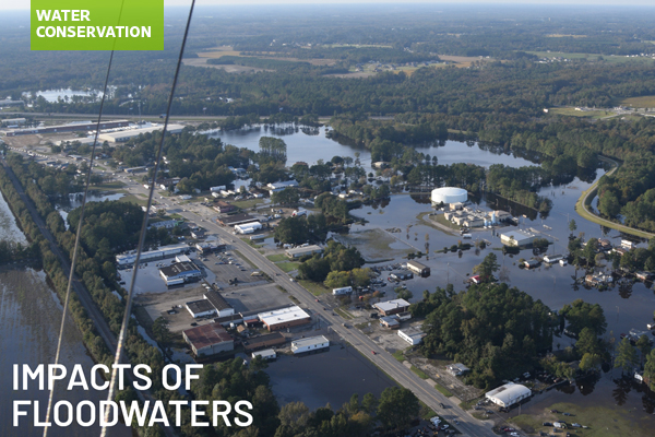 Impacts of floodwaters